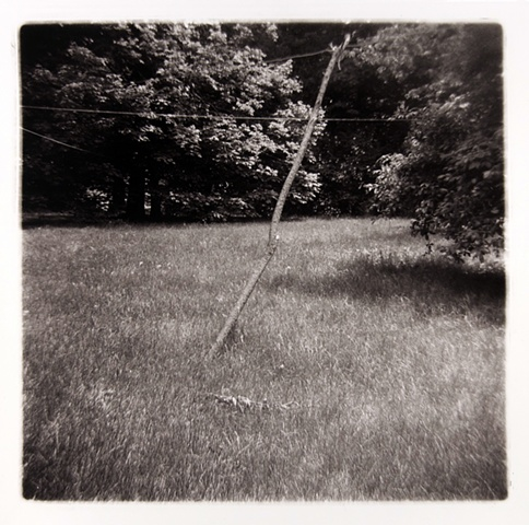 Stick, Silverwood