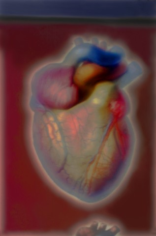 "The Heart 2014 zone plate photograph archival pigment print 13""x20"" from ""The Atlas of Human Anatomy"" by J. M Bourgery and N. H. Jacob, 1832-1854"
