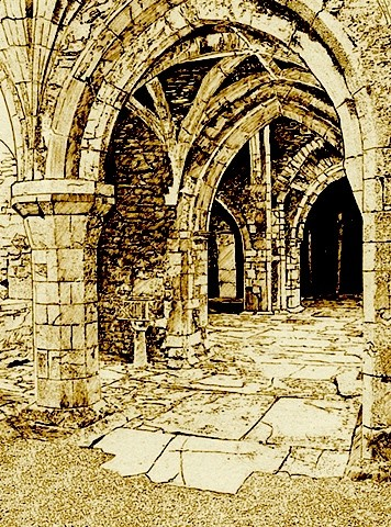 Kilcooley Abbey Co. Tipperary Interior Sepia Print