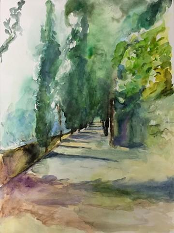 Walking in Umbria