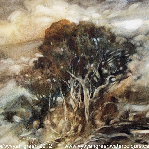 Watercolour painting of trees.