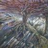 Tree in Wales