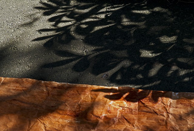 Ashphalt and Paint, Natural Shadows, Maple Leaves on Asphalt, Painted Paper and Light