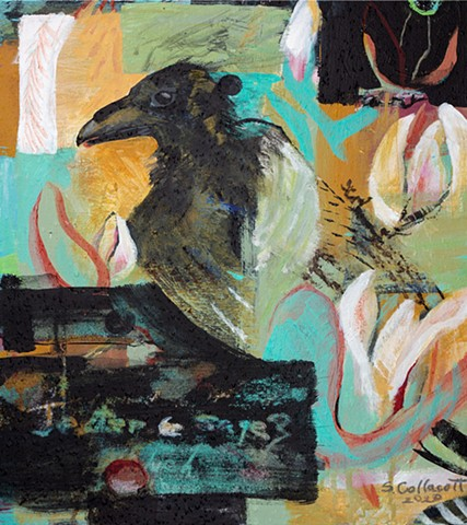 @ susancollacott.com, RAVENS, BLACK BIRDS, CROWS, MYSTERIOUS