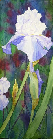 iris, pale blue, translucent, vertical, ruffled, abstract background, floral, watercolor, icy blue, stained glass, jewel-like,rainbow, flower