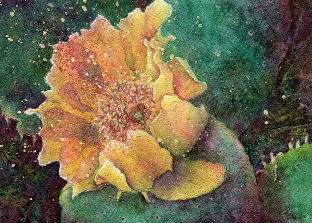 yellow prickly pear blossom with pads