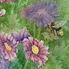 """Chrysanthemums and Bumblebee"""
