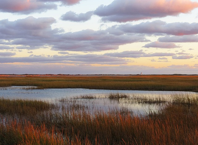 Autumn Sunset at the Moors, Provincetown, MA © Sally Brophy
