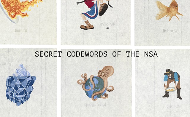 Secret Codewords of the NSA