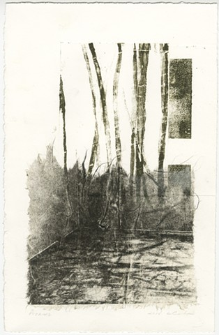 Lithograph, Monoprint, Printmaking, Photolitho
