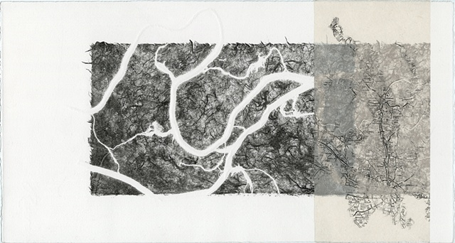 print, printmaking, lithograph, chine colle', monoprint