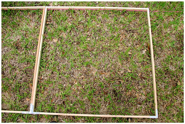 Planting Into the Grid, 2009 Row 2, Image 34, July 24, 2010