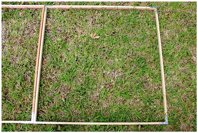 Planting Into the Grid, 2009 Row 2, Image 13, July 24, 2010