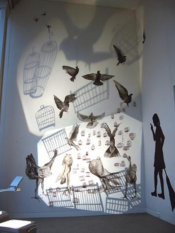 Bird market explosion, pigeons