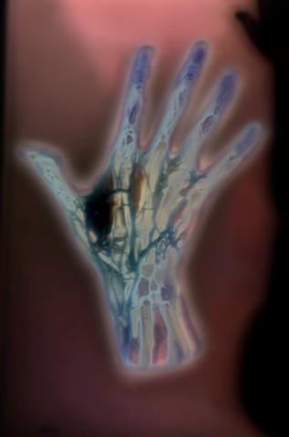 """Veins of the Hand 2014 zone plate photograph archival pigment print 13""""x20"""" from """"The Atlas of Human Anatomy"""" by J. M Bourgery and N. H. Jacob, 1832-1854"""