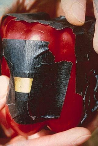 Red Pepper Pinhole Camera 1987