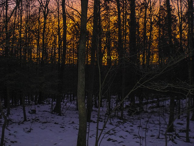 2013 Ice Catskill Mountain Winter Sunrise