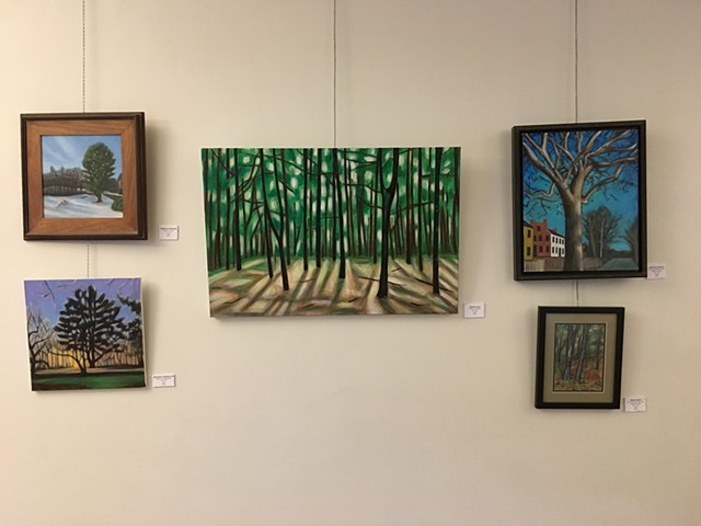 Solo show themed around New England Trees.