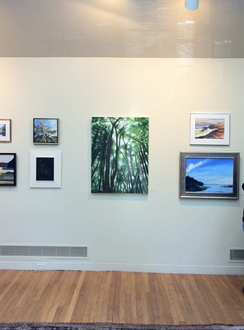 Concord Art Association Members Juried 1, 2012