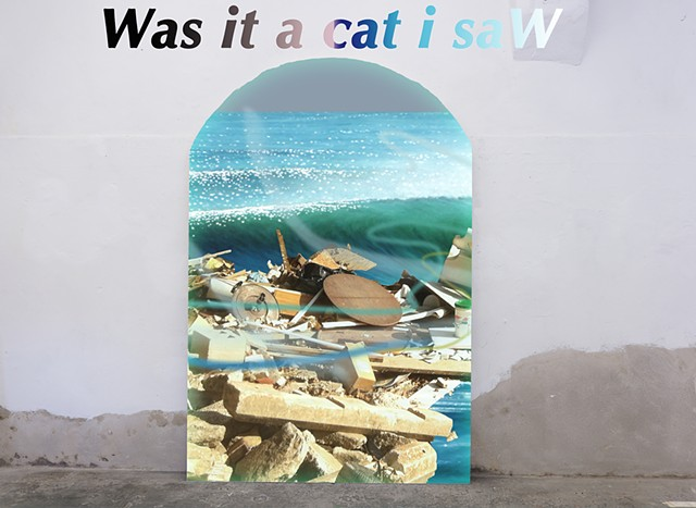 Was it a cat i saW
