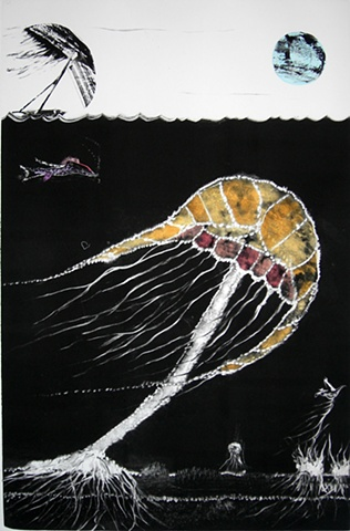 monotype, Risk The Ocean Series