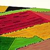 Feudal Landscape XI  copyright Othmar Tobisch