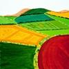 Feudal Landscape IV  copyright Othmar Tobisch