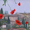 Chianti: Poppies