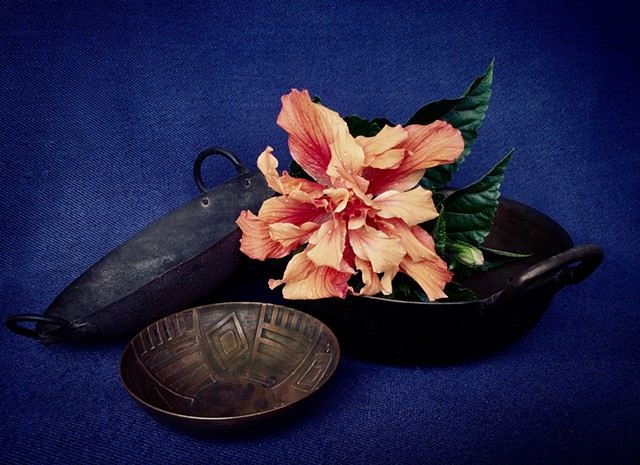 Digital Photograph, Cucarda, Pailas, Contemporary still life, latinx art, Sandra C. Fernandez, Photography, Color Photography,