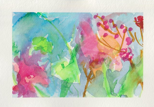 A colourful dance of garden flowers.