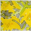 18 Yellow Tulips (Detail 1)