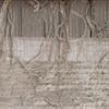 "'Declaration""  bottom unfurled from loom"