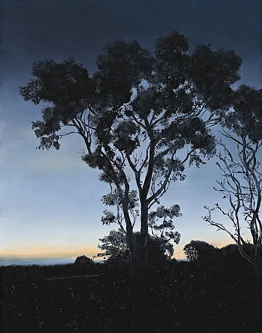 Last light of the day from the verandah SOLD