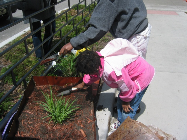 Victory Garden Planting