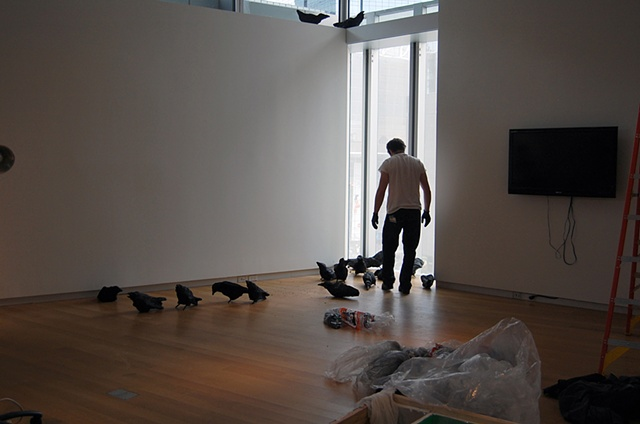 Installing Murder (Museum of Arts and Design, New York, NY)