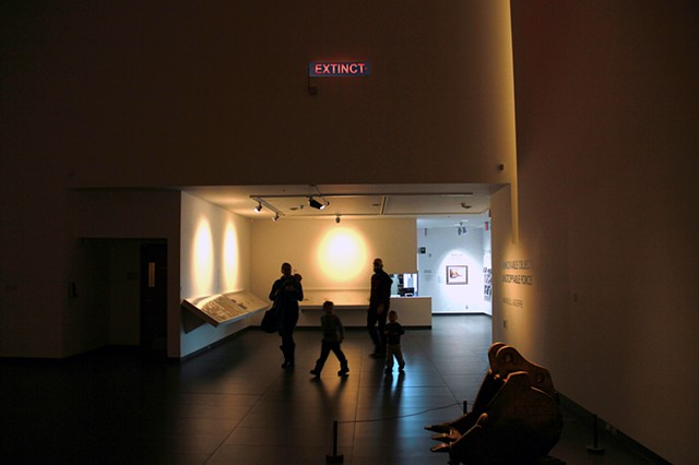 EXTINCT (Installation View)