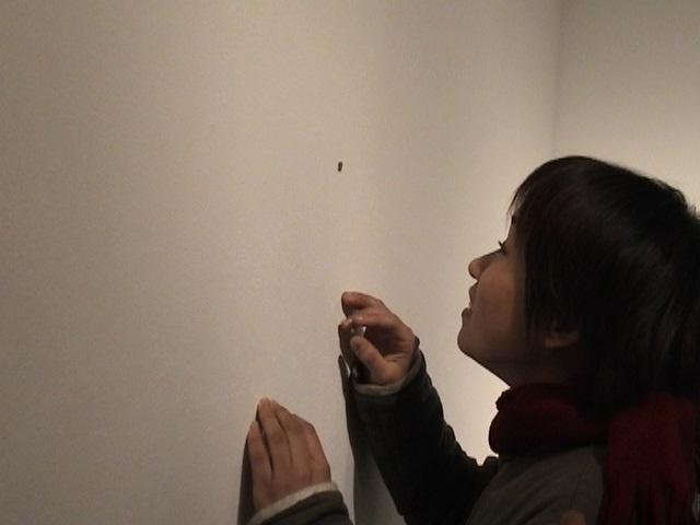 "Installation - ""Life"" Contemporary Art Factory, Tokyo"