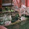 Drainage Pool