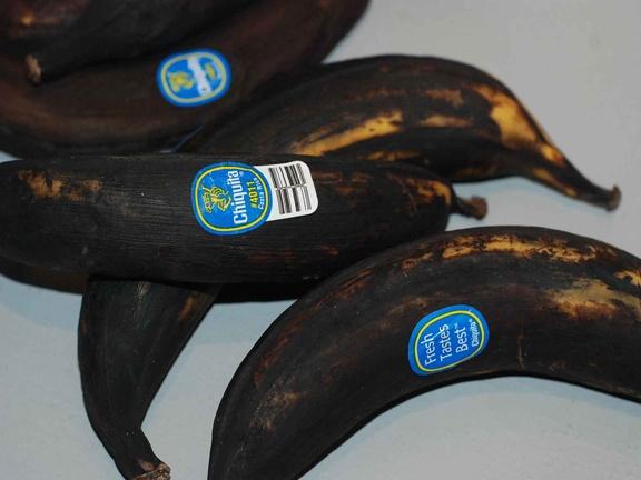 Banana Republic: Conflations & Migrations