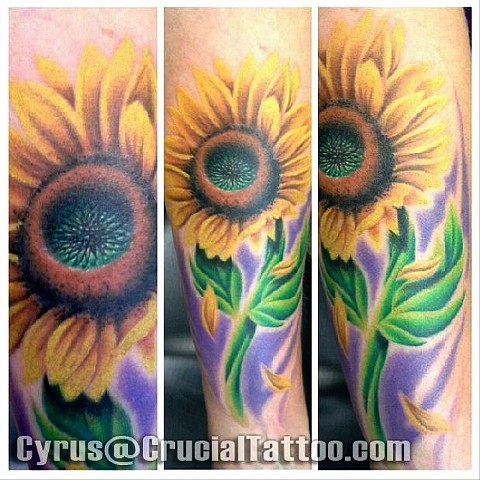 cyrus high tattooer crucial tattoo studio ocean city maryland delaware virginia best tattoos sunflower flower