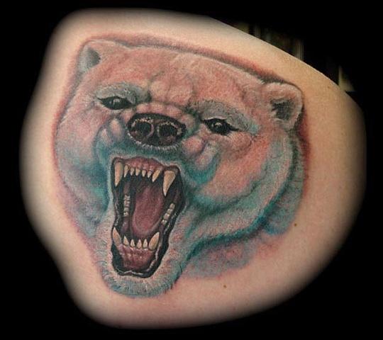 tattoo polar bear teeth color portrait tattoos salisbury maryland