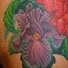 Iris side