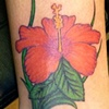 hibiscus flower cover up