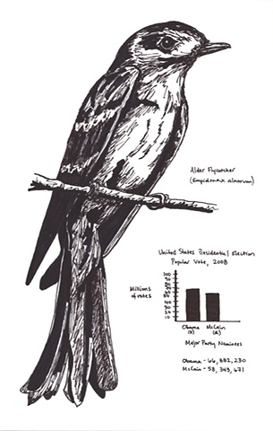 Untitled: North American Field Guide Series Alder Flycatcher United States Presidential Election 2008 (Popular Vote)