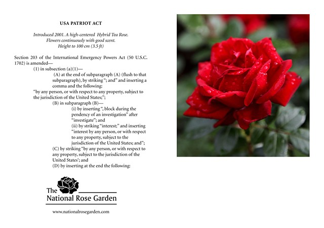 Selections From The National Rose Garden Notecard USA Patriot Act