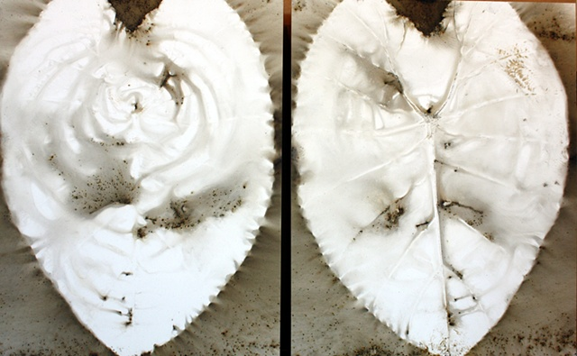 Elephant Ear Leaves/Diptych