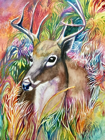 "Watercolor painting of ""My Deer"" by Michael Gross Grant Colorado Artist"
