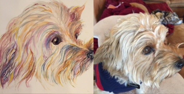 Pet Portraits Starting at just $45
