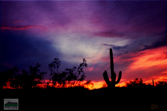 Ron Schoonejongen Photography and Digital Art - Desert Sunset Gallery