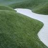 landscape intervention 6